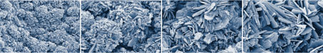 SEM pictures of BONIT® surface (electrochemical calcium-phosphat-coating)